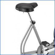 Schwinn Airdyne AD4 Upright Exercise Bike