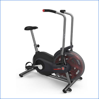 Schwinn Airdyne AD2 Upright Exercise Bike